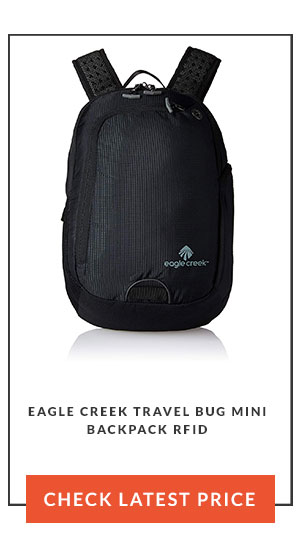 13af6c24da Eagle Creek Travel Bug Mini Backpack RFID Review (Black Steel One Size)