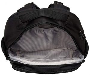 Pacsafe Metrosafe LS350 Anti-Theft 15L Backpack (1)