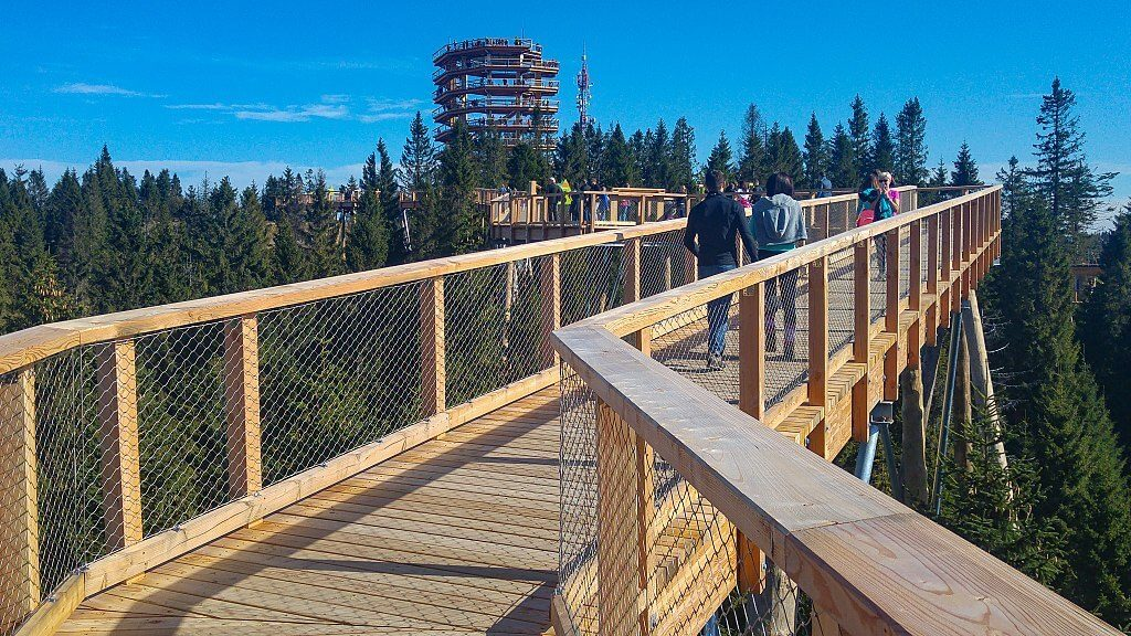 Bachledka Treetop Walk