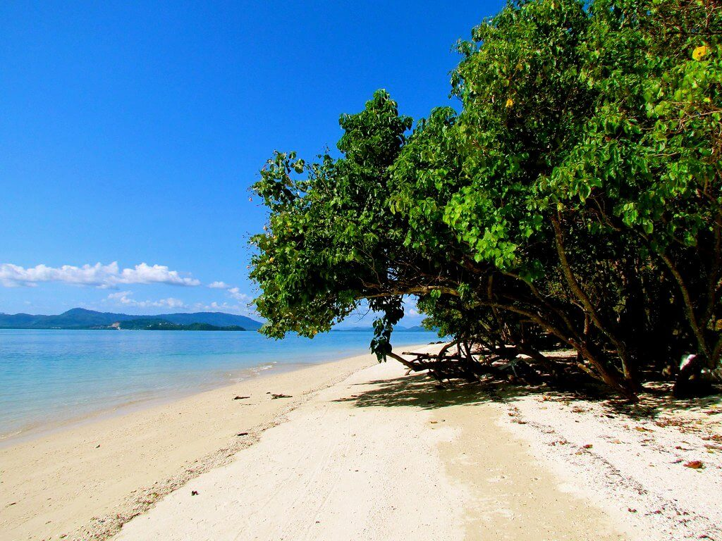 Best Time to Travel Thailand