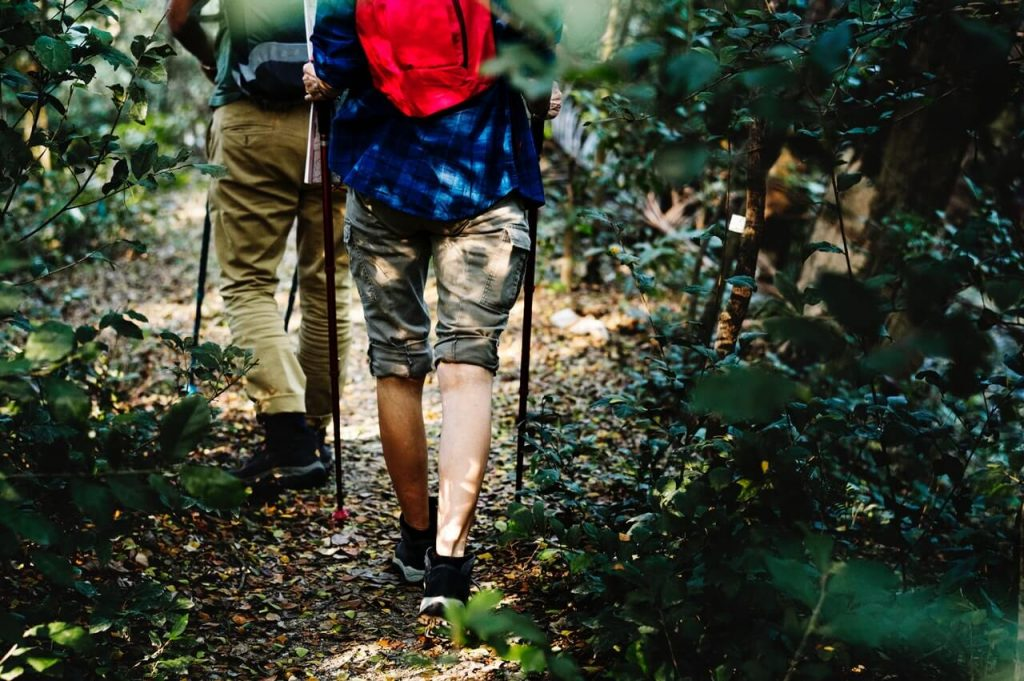 Find Comfortable Hiking Footwear