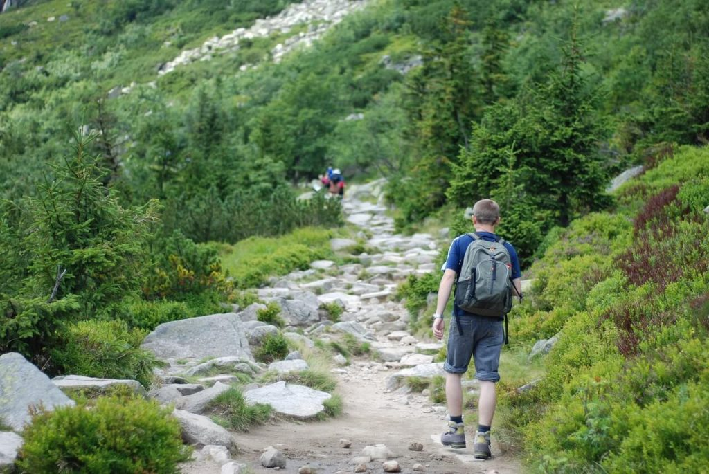 Hiking Benefits For Legs
