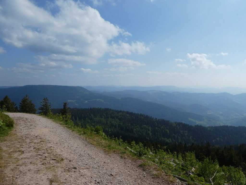Westweg in the Black Forest
